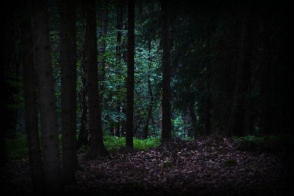 GetOutFun lovci-duchu-zakleta-stezka-3