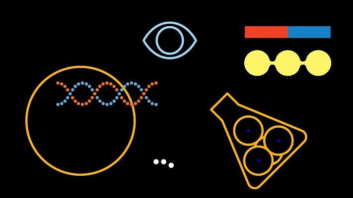 Dny vědy, sportu a umění 2018